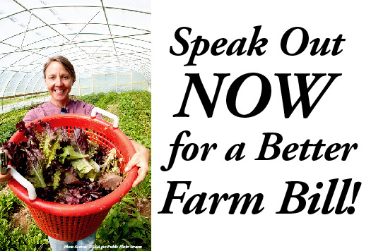 Speak out now for a better farm bill! (image)